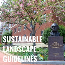 Sustainable Landscape Guidelines